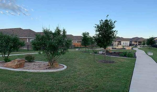 community-park-trees